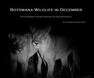 Botswana Wildlife in December
