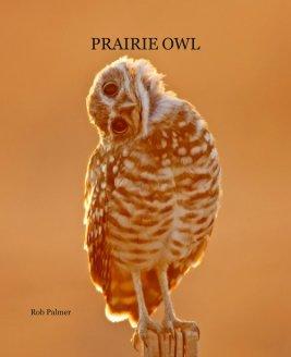 PRAIRIE OWL book cover