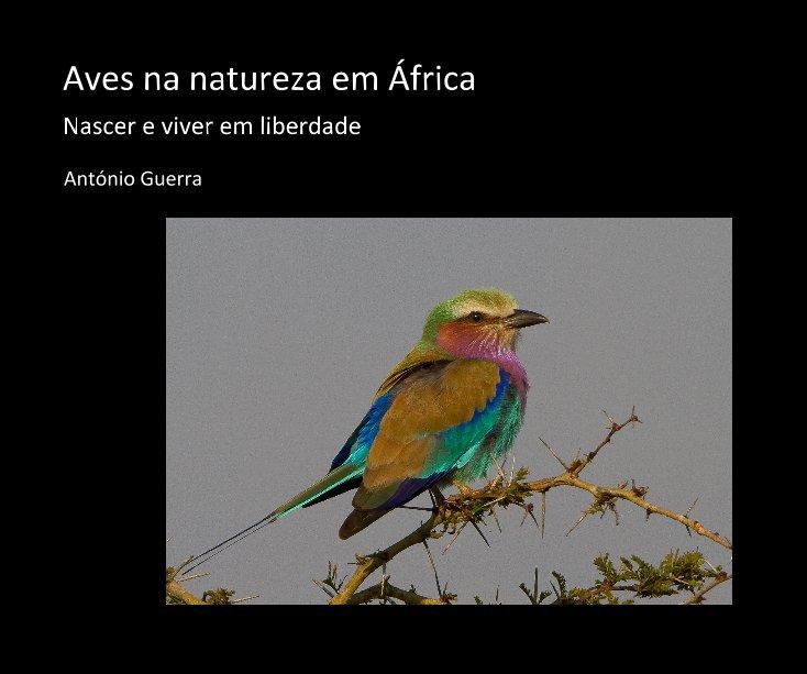 Ver Aves na natureza em África por António Guerra
