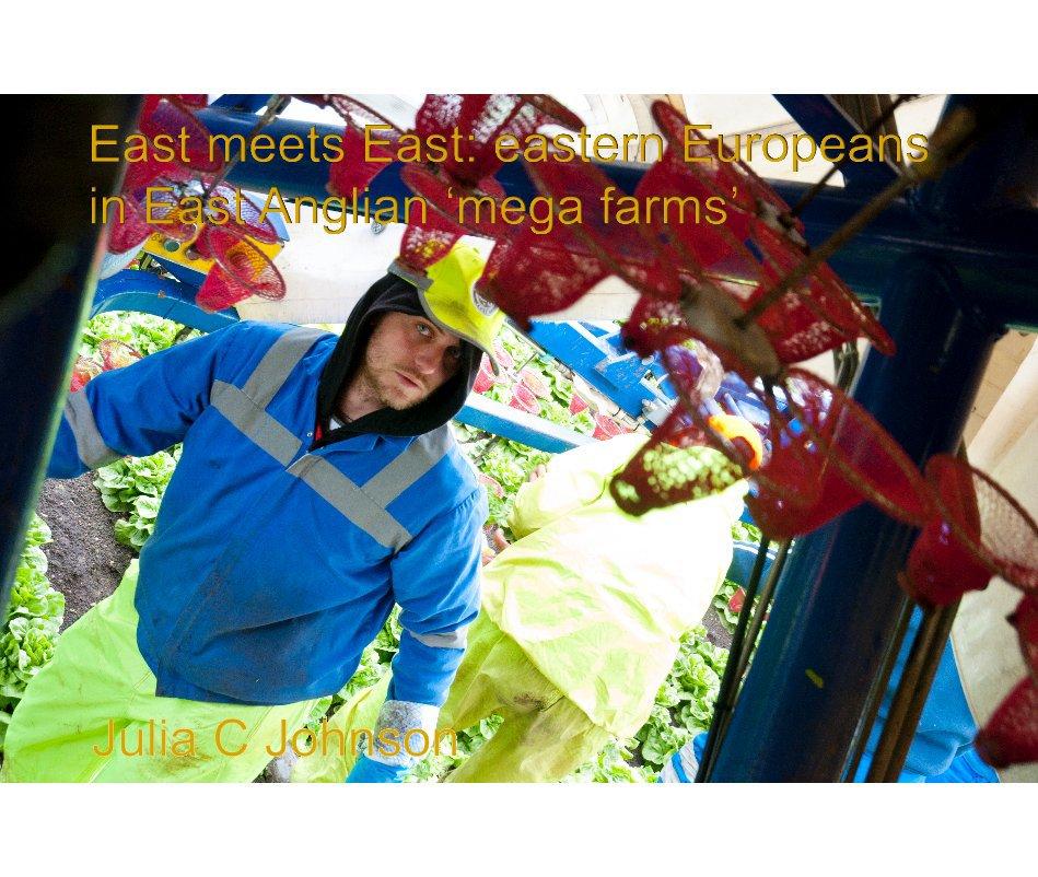 View East meets East: eastern Europeans in East Anglian 'mega farms' by juliaj1