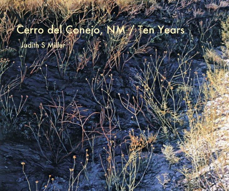 View Cerro del Conejo, NM / Ten Years by Judith S Miller