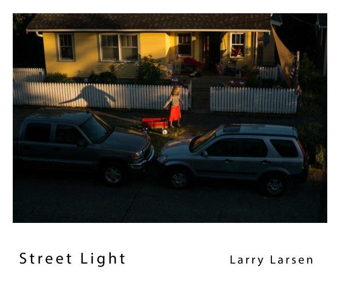 View Street Light by Larry Larsen