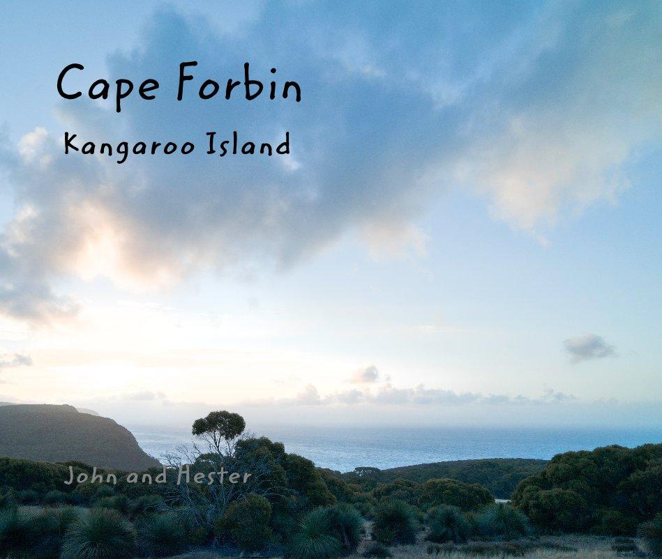 View Cape Forbin, Kangaroo Island by John and Hester