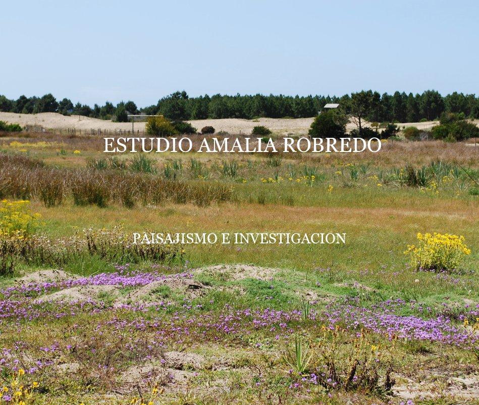 View ESTUDIO AMALIA ROBREDO by PAISAJISMO E INVESTIGACION