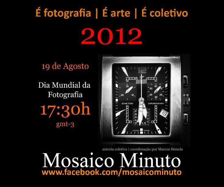 View Mosaico Minuto 2012 by Autoria Coletiva   Coordenação por Marcos Semola
