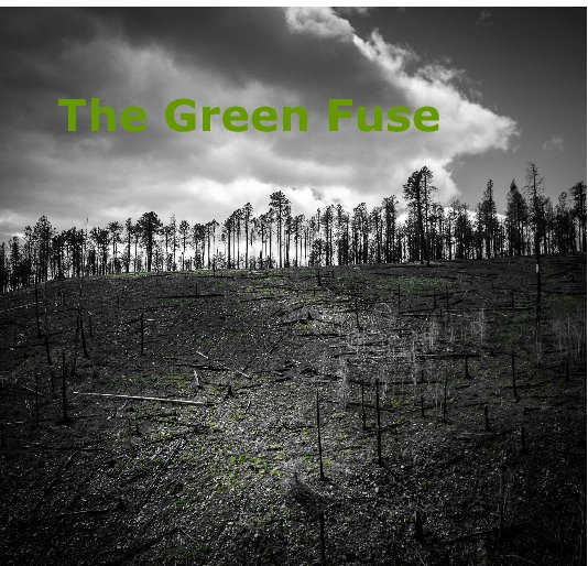 View The Green Fuse by Patricia Galagan