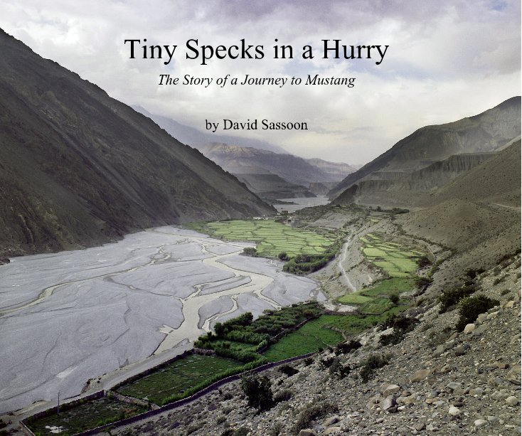 View Tiny Specks in a Hurry by David Sassoon