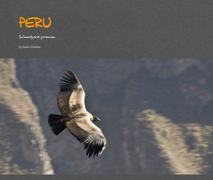 PERU book cover