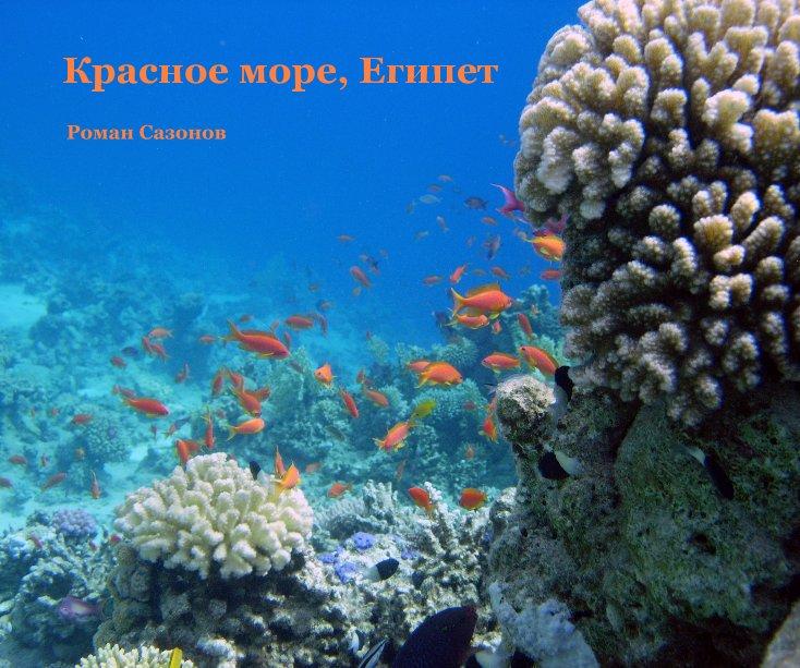 View Красное море, Египет by Роман Сазонов