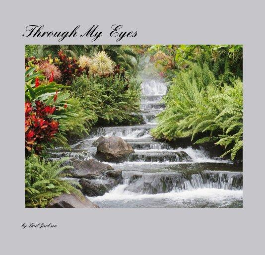 View Through My Eyes by Gail Jackson