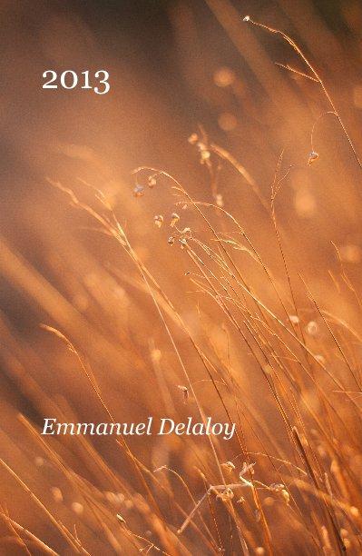 Bekijk Agenda 2013 - 52 semaines op Emmanuel Delaloy