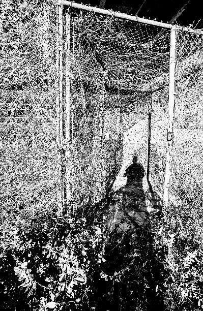 View GTMO: Camp X-Ray by Sean Galbraith