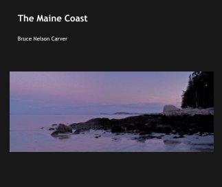 The Maine Coast book cover