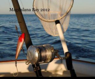 magdalana bay 2012 book cover