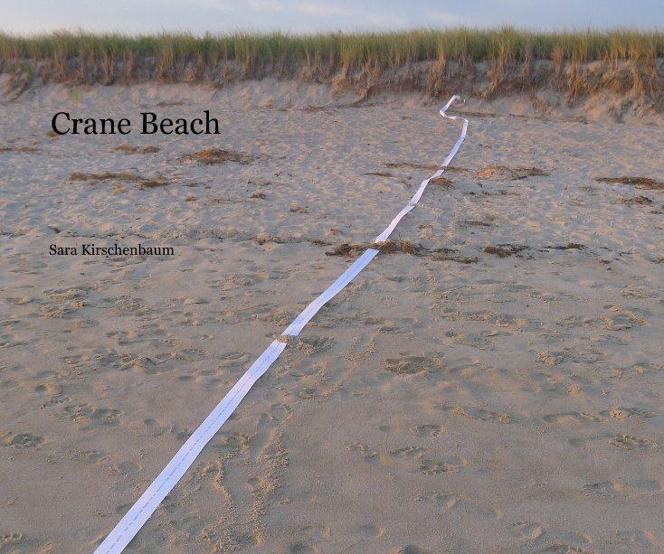 View Crane Beach by Sara Kirschenbaum