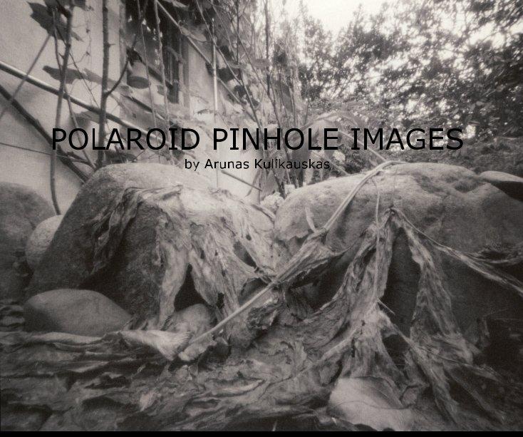 View POLAROID PINHOLE IMAGES by Arunas Kulikauskas