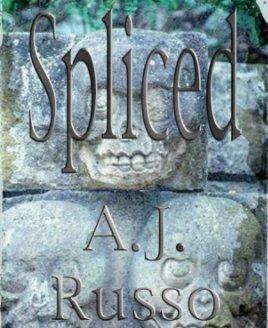 Spliced book cover
