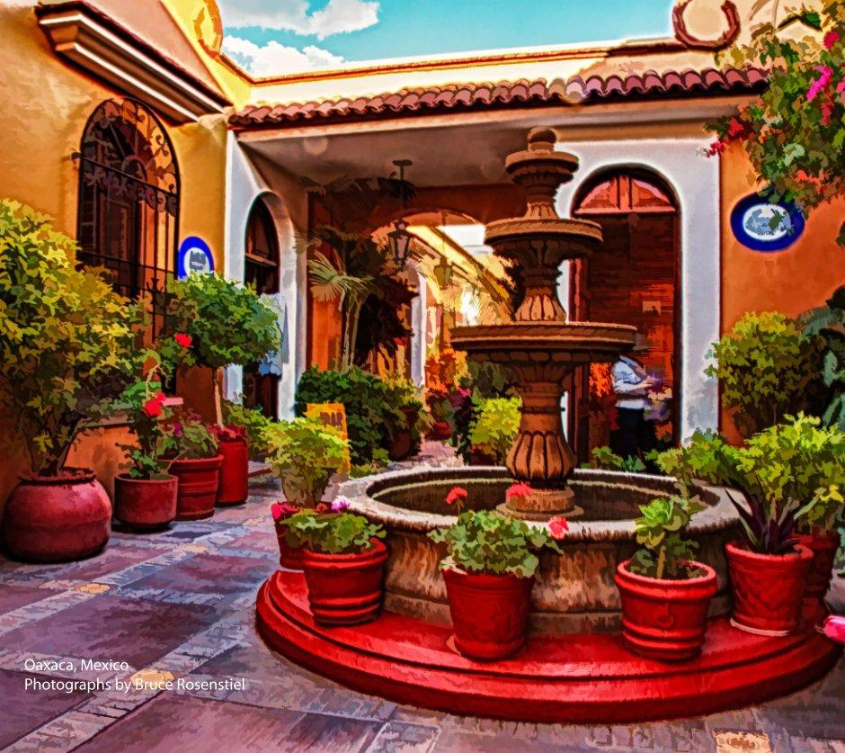 View Oaxaca, Mexico by Bruce Rosenstiel