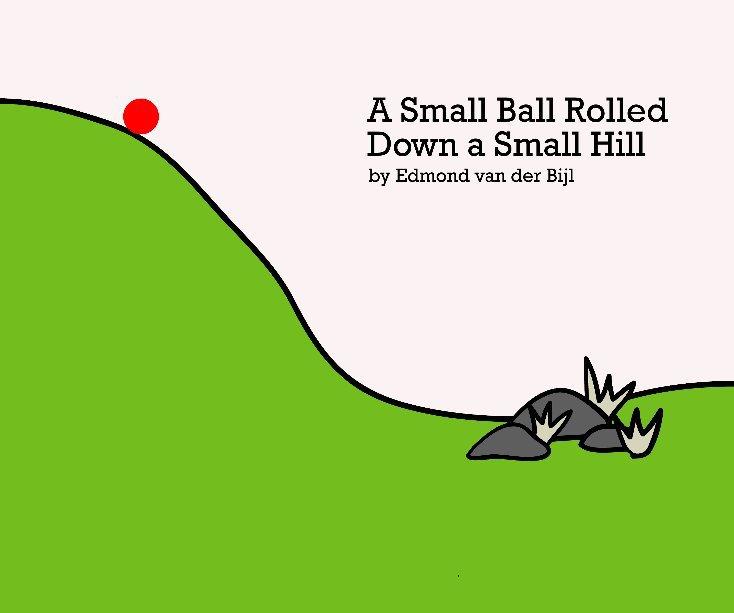 View A Small Ball Rolled Down a Small Hill by Edmond van der Bijl
