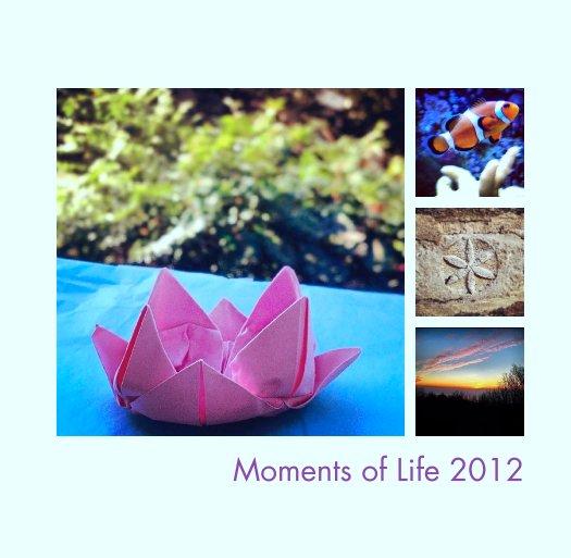 View Moments of Life 2012 by Georgi Karamihaylov