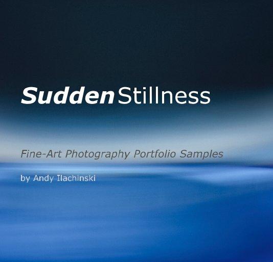 View Sudden Stillness by Andy Ilachinski