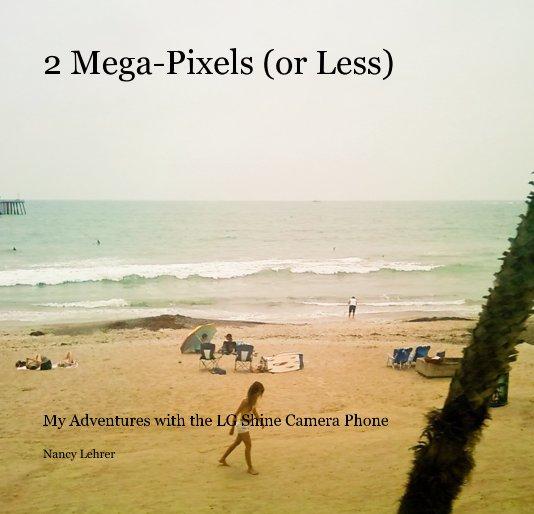 View 2 Mega-Pixels (or Less) by Nancy Lehrer