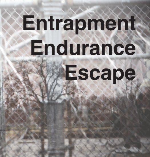 View Entrapment, Endurance, Escape by Elsa Marie Keefe