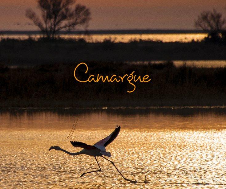 Visualizza Camargue di Erika Carrera