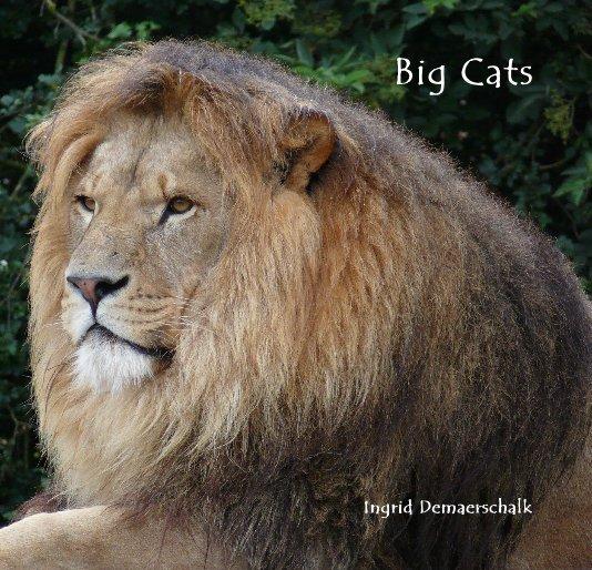 View Big Cats by Ingrid Demaerschalk