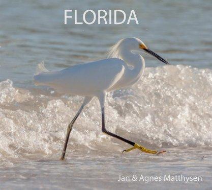 Florida book cover