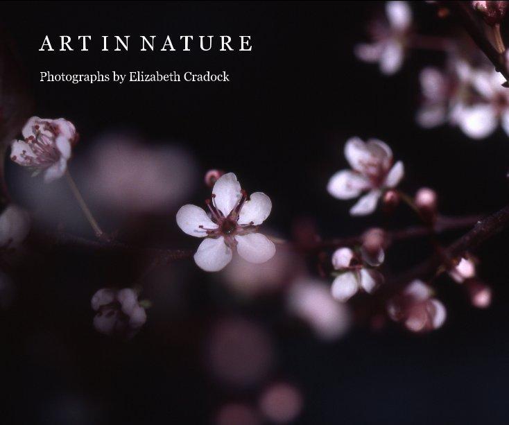 View Art in Nature by Elizabeth Cradock