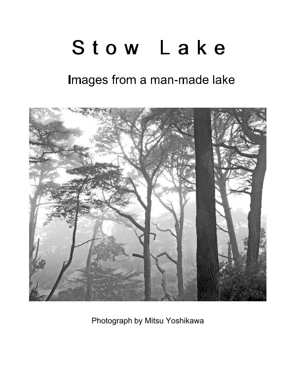 View Stow Lake by Photograph by Mitsu Yoshikawa