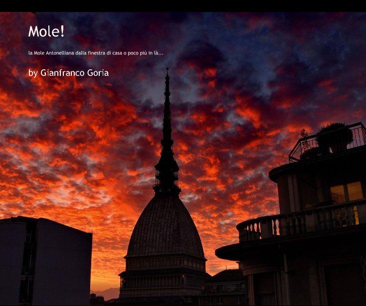 View Mole! by Gianfranco Goria