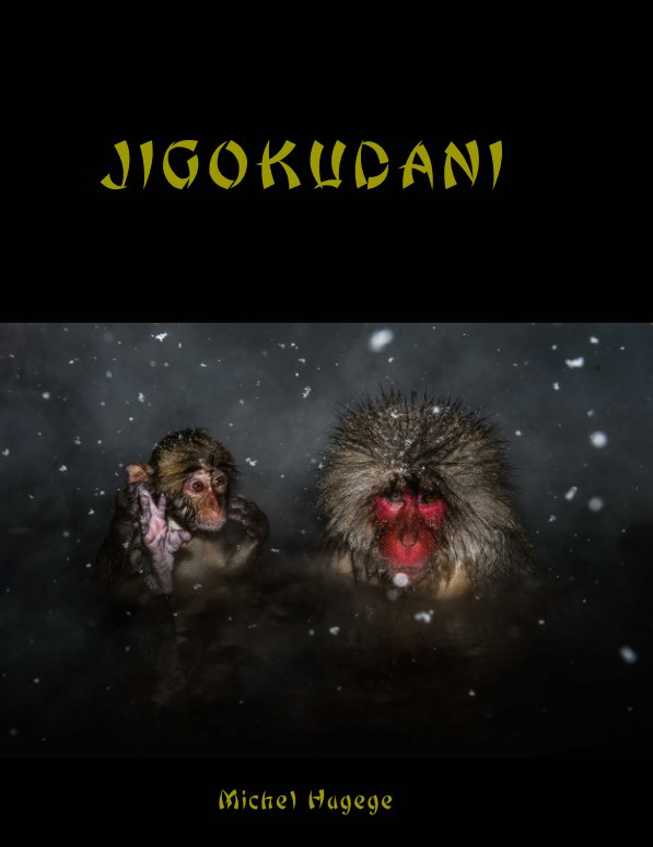 View Jigokudani by Michel Hagege