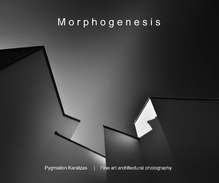 View M o r p h o g e n e s i s by Pygmalion Karatzas