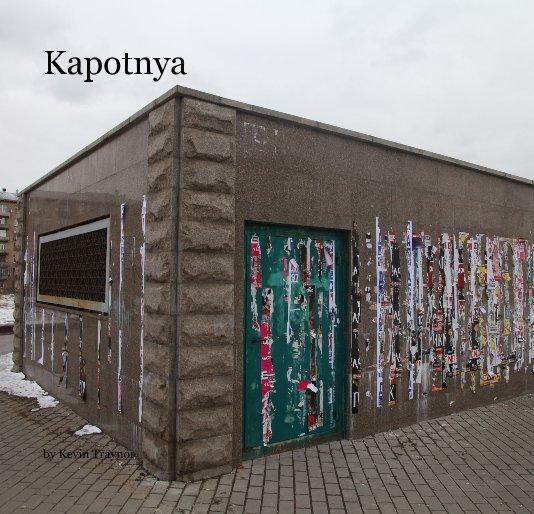 View Kapotnya by Kevin Traynor