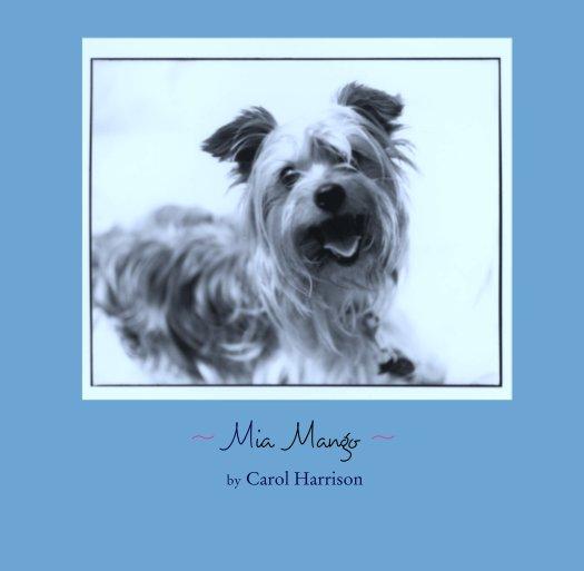 View ~  Mia   Mango  ~   by Carol Harrison by Carol Harrison