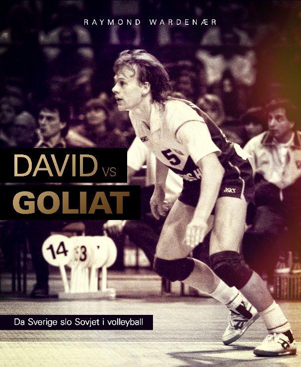 View David vs Goliat by Raymond Wardenær