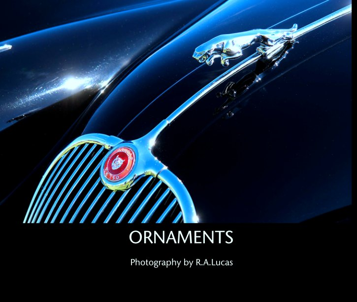 View ORNAMENTS by Photography by R.A.Lucas