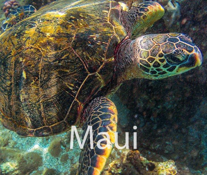 View Maui 2013 by Andrea Spallanzani