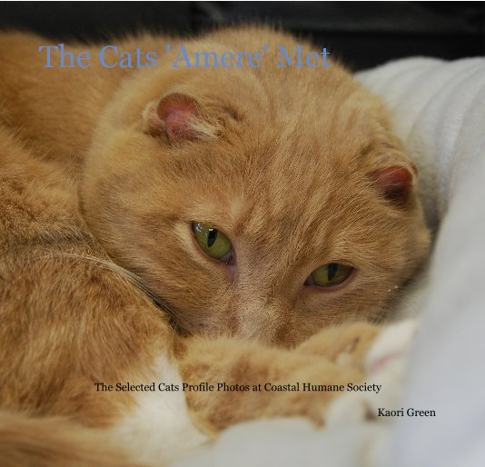 View The Cats 'Amere' Met by Kaori Green