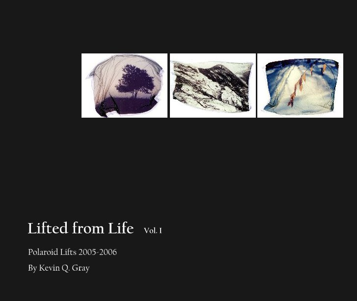 View Lifted from Life   Vol. I by Kevin Q. Gray