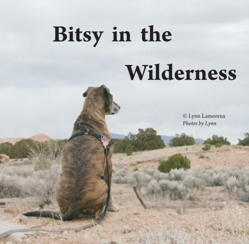 View Bitsy in the Wilderness by Lynn Lamoreux