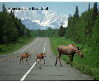 America The Beautiful book cover