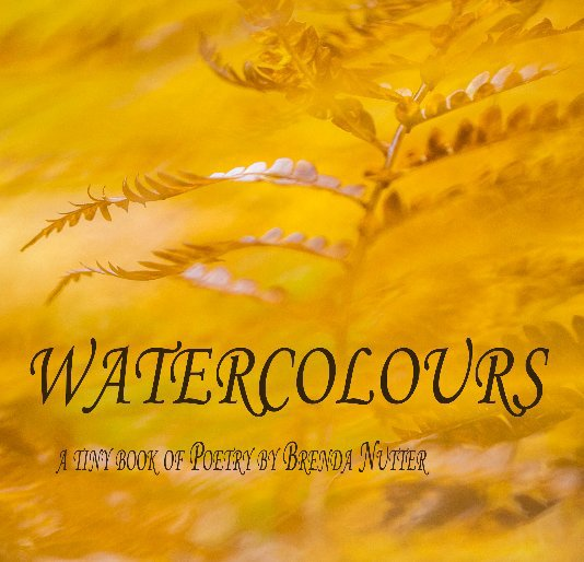 View Watercolours by Brenda J Nutter