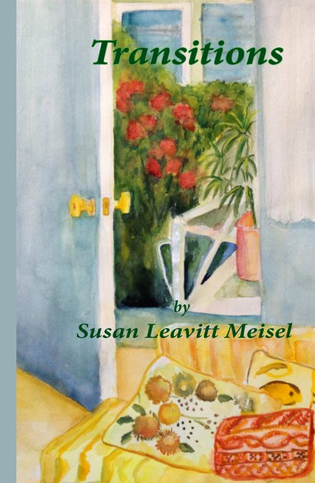 View Transitions by Susan Leavitt Meisel