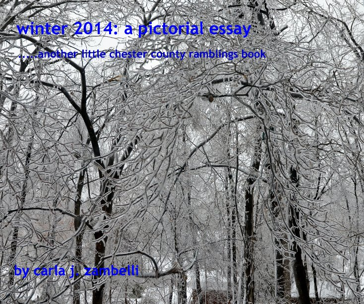 View winter 2014: a pictorial essay by carla j. zambelli