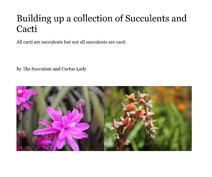 View Building up a collection of Succulents and Cacti by The Succulent and Cactus Lady