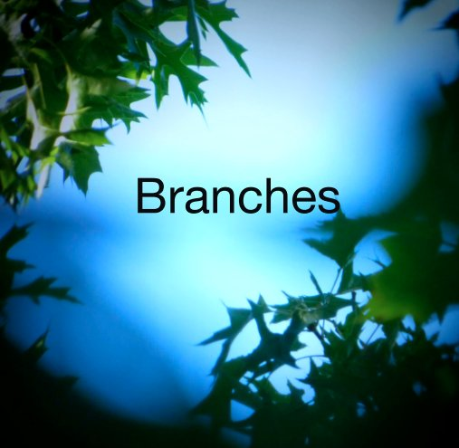 View Branches by CStaples