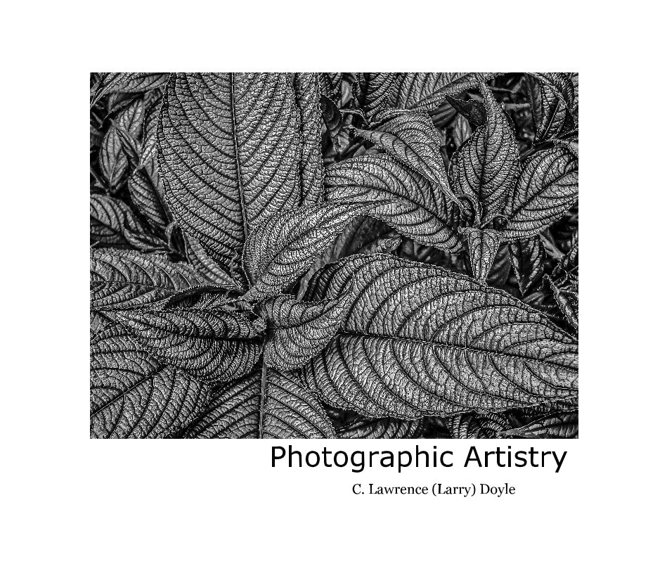 View Photographic Artistry by C. Lawrence (Larry) Doyle